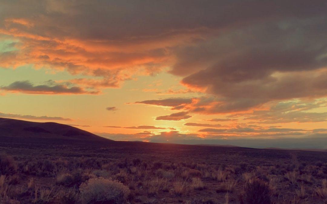 Of Meadowlarks, Dawn to Dawn