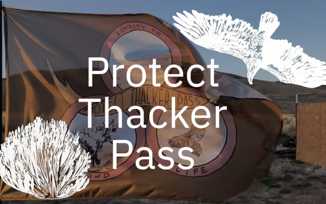 Thacker Pass Warriors Needed At Camp