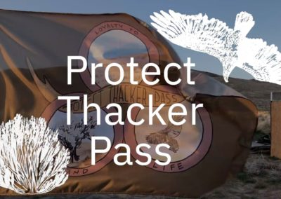 Protect Thacker Pass with flag
