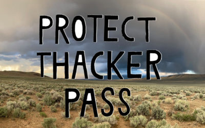 Max Wilbert on the Thacker Pass Campaign