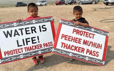 The National Congress of American Indians Passes Resolution In Support of Protection of Thacker Pass